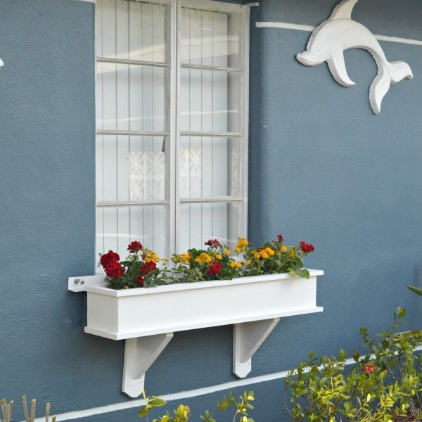 window-box-square-