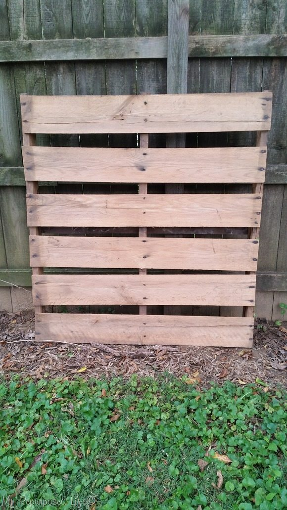 extra large pallet