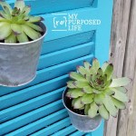 Repurposed Shutter Vertical Garden Succulent Planter