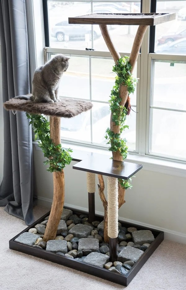 diy cat tree using a real tree