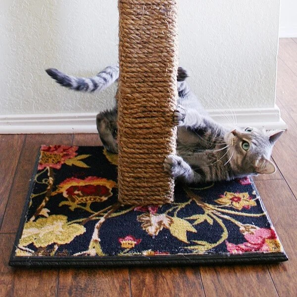 make your own cat scratching post