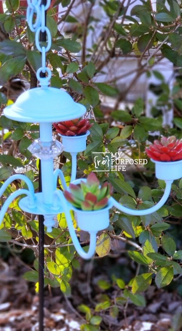 succulent planter repurposed chandelier MyRepurposedLife