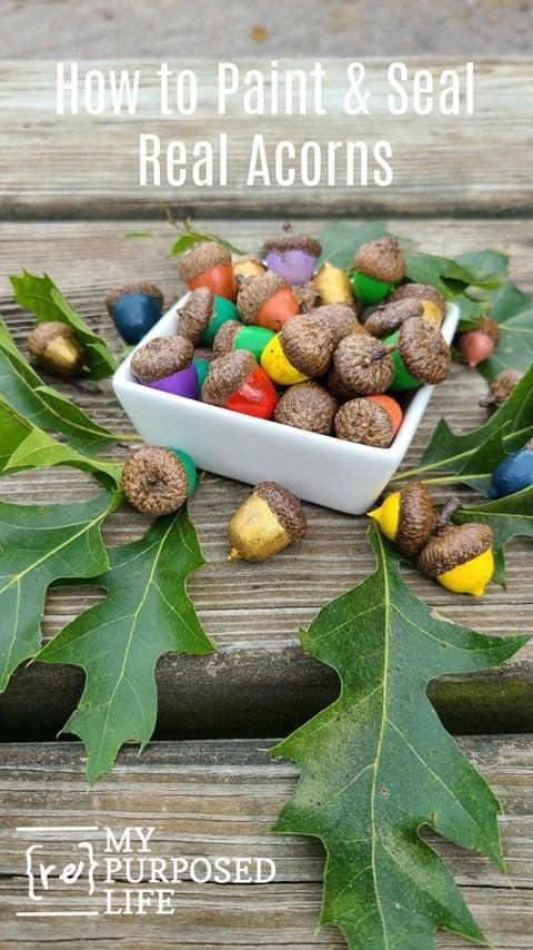 how to paint and seal acorns MyRepurposedLife