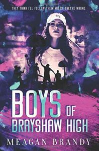 Book Review Boys of Brayshaw High by Meagan Brandy