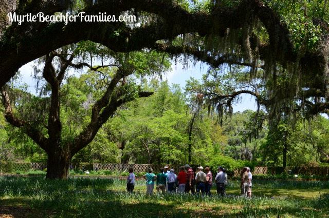 off-season fun in Myrtle Beach, Brookgreen Gardens
