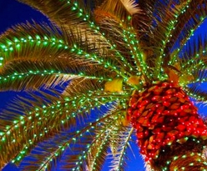 Our Top Five Reasons to Visit Myrtle Beach for the Holidays