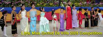 Little Miss Orchid De Villa