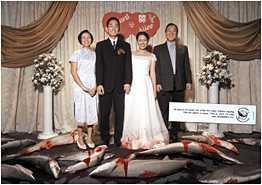 Bloody Chinese Wedding