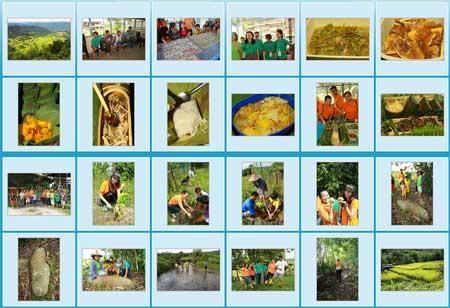 Photo gallery of Tambunan Homestay