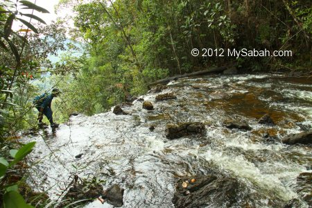 top of Tawai Waterfall