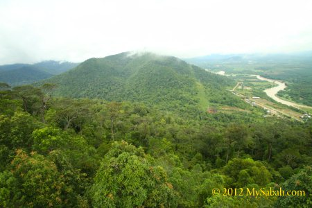 view of Telupid from the tower