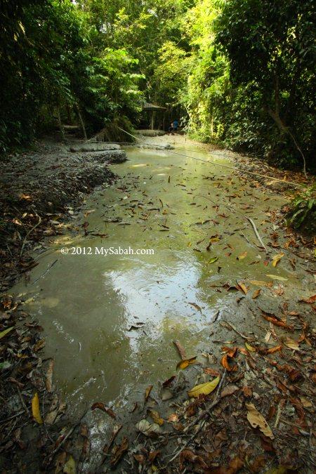 mud volcano pools of Pulau Tiga, Survivor Island
