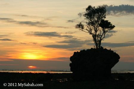 Bird Rock (Batu Burung) of Pulau Tiga Island