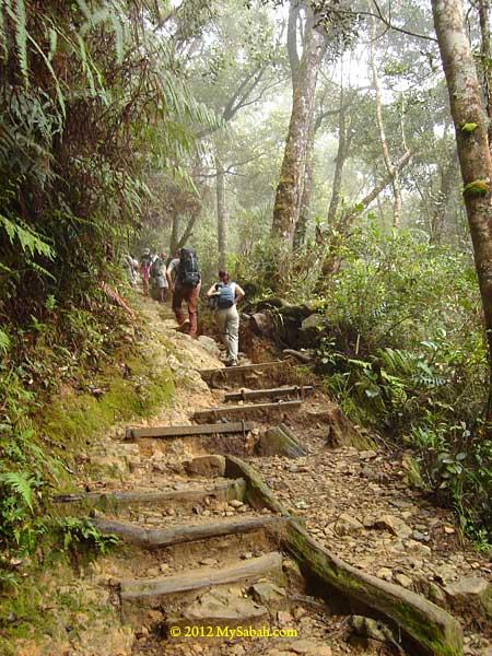 trail to Mt. Kinabalu