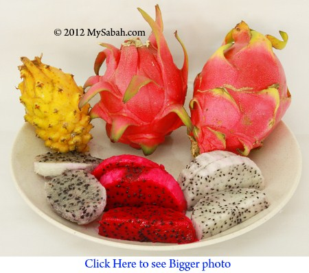 flesh of 3 dragonfruit species