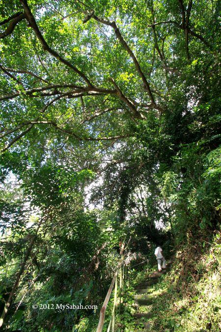 oldest track of Kota Kinabalu