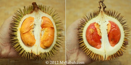 red and orange durian