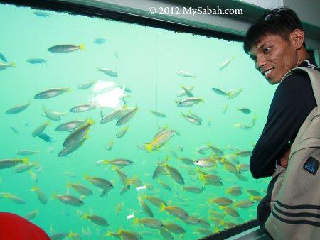 underwater observatory of Borneo Reef World