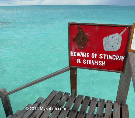 warning sign for stonefish and stingray
