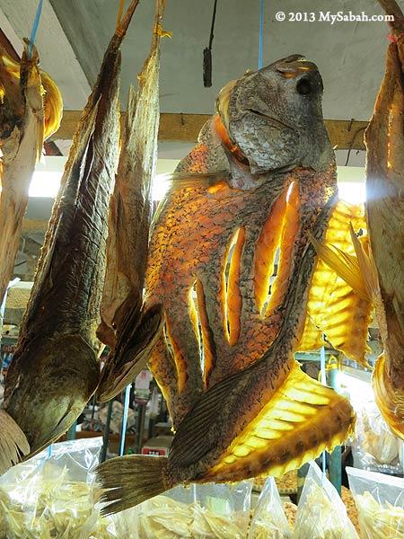 hanging salty fishes (ikan masin)