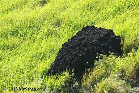 volcanic rock of Skull Hill