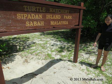 signage of Sipadan Turtle Hatchery