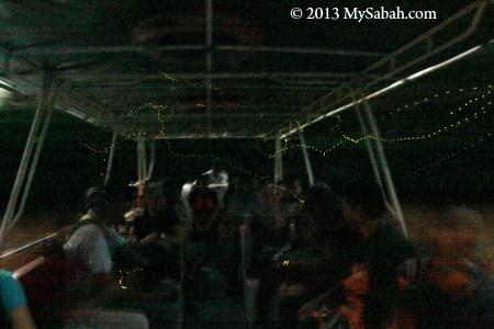 fireflies in the boat