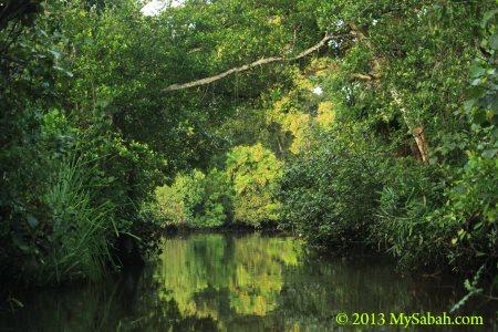 river cruise in Klias River