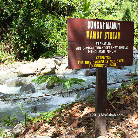 polluted Mamut River