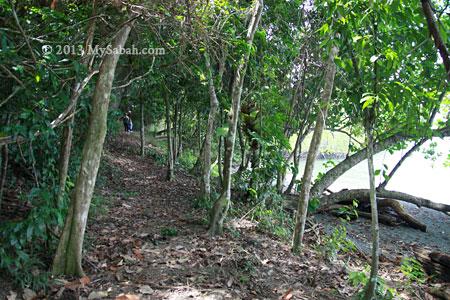 jungle trekking in Tumunong Hallu