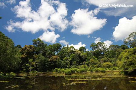 Pandan Lake of Taliwas
