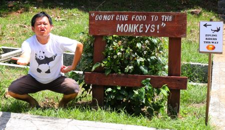 Sign that reads: Do not feed the monkey