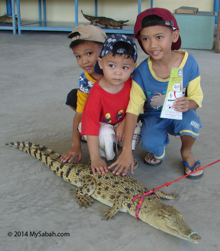 children playing with small crocodile