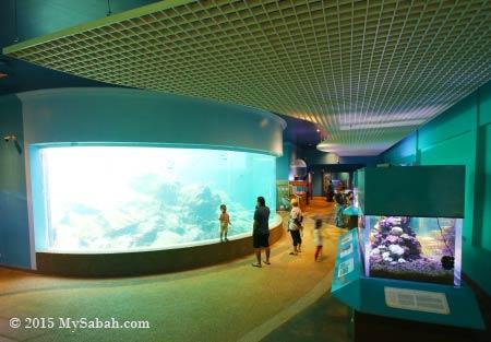 aquarium of UMS
