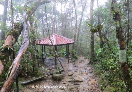 Tikalod Shelter
