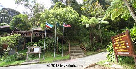 Mesilau - Kinabalu Park