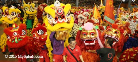 dance by over 100 lions