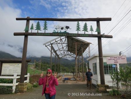 entrance of Desa Dairy Farm