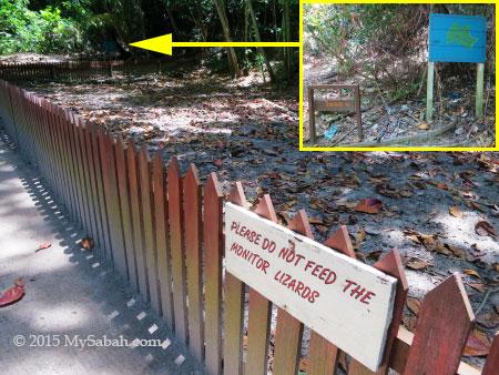 way to jungle trail