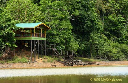 Tanjung Bulat Jungle Camp