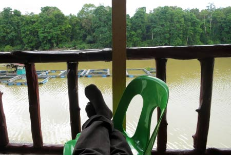 chilling out at Tanjung Bulat Jungle Camp