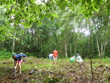 planting trees for Corridor of Life