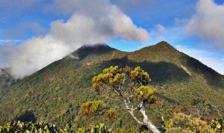 Mount Trusmadi