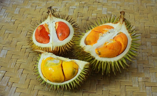 durian flesh in 3 colors