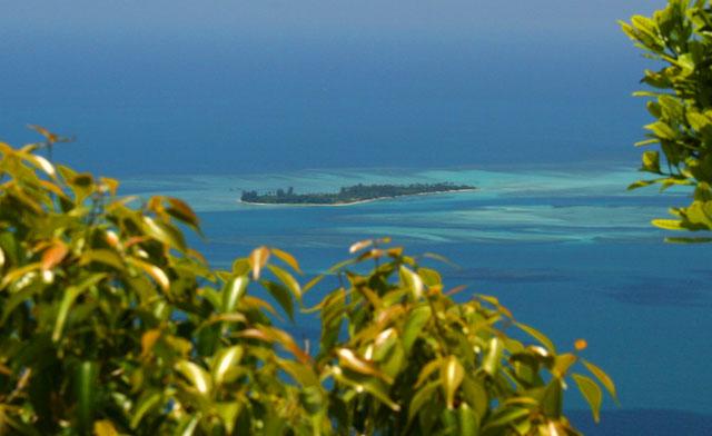 Climbing Senambung Hill
