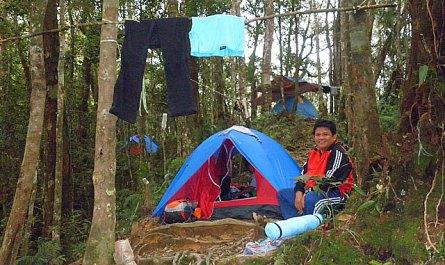 Musang Camp