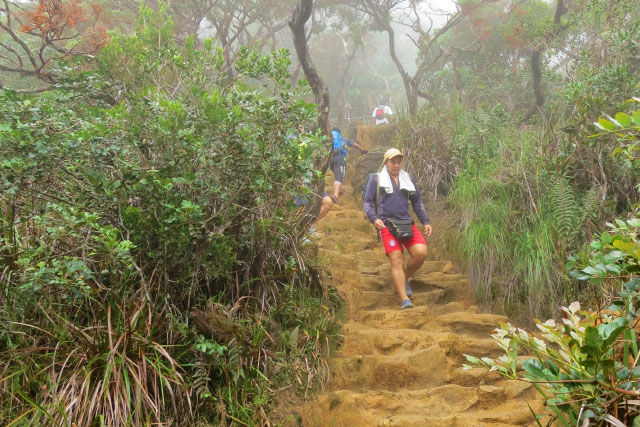 Loop Trail of Mt. Kinabalu, the Best Hiking Route of Sabah