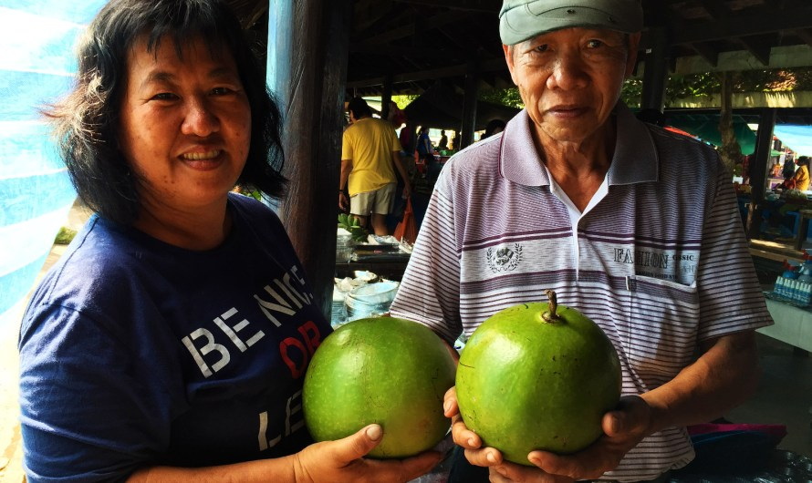 Giant Fig Fruit with Big Uses