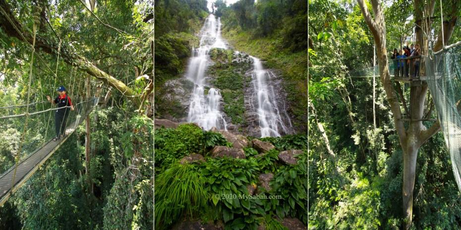 Canopy Walk and Langanan Waterfall in Poring