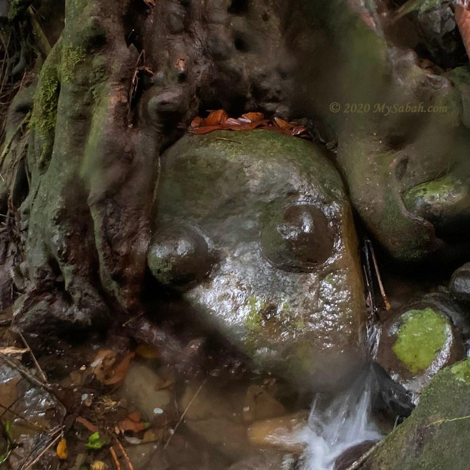 Boobs Rock (Batu Nenen)